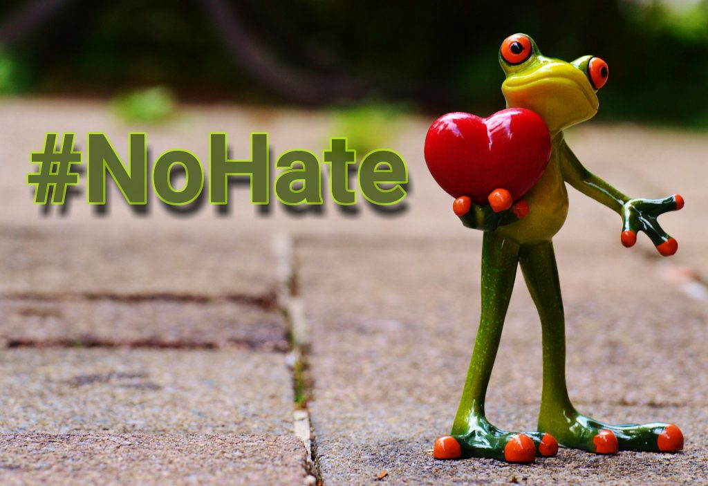 Rana con corazón y el hashtag #nohate